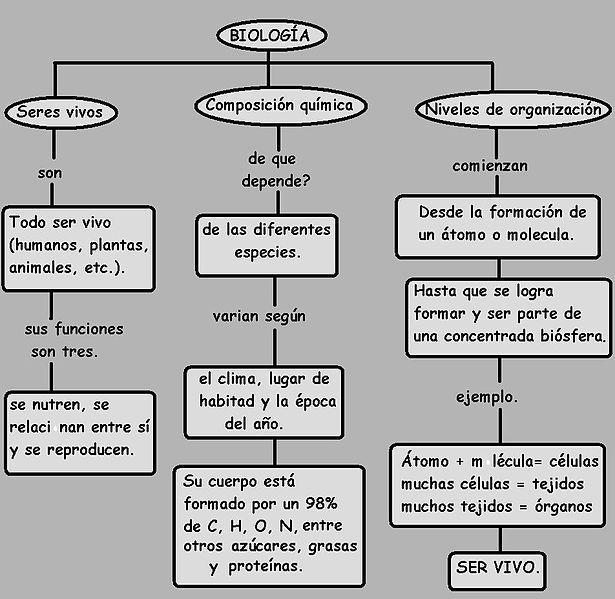 File Mapa Conceptual De Los Seres Vivos Sus Niveles De Organizacion Y Composicion Quimica Jpg Spanish Language Learning Learning Spanish Language