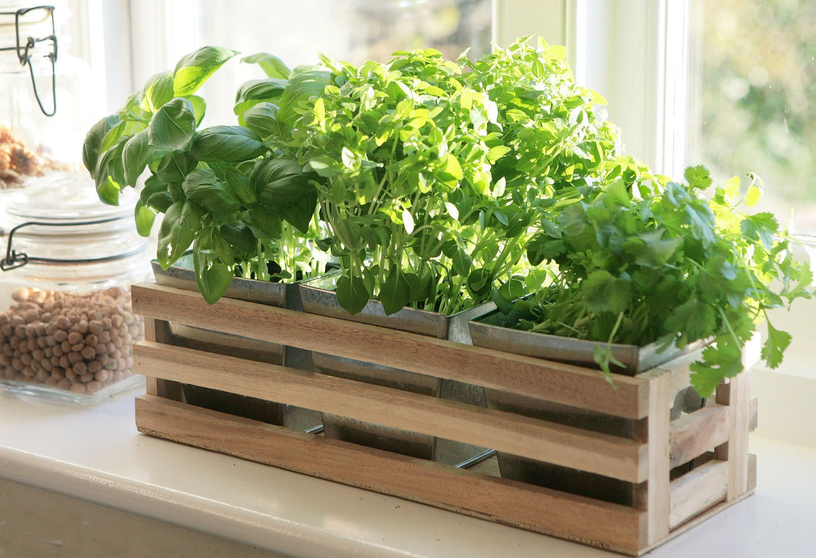 Marvelous Kitchen Herb Window Planter Box Wooden Trough U0026 Metal Plant Pots Indoor  Garden