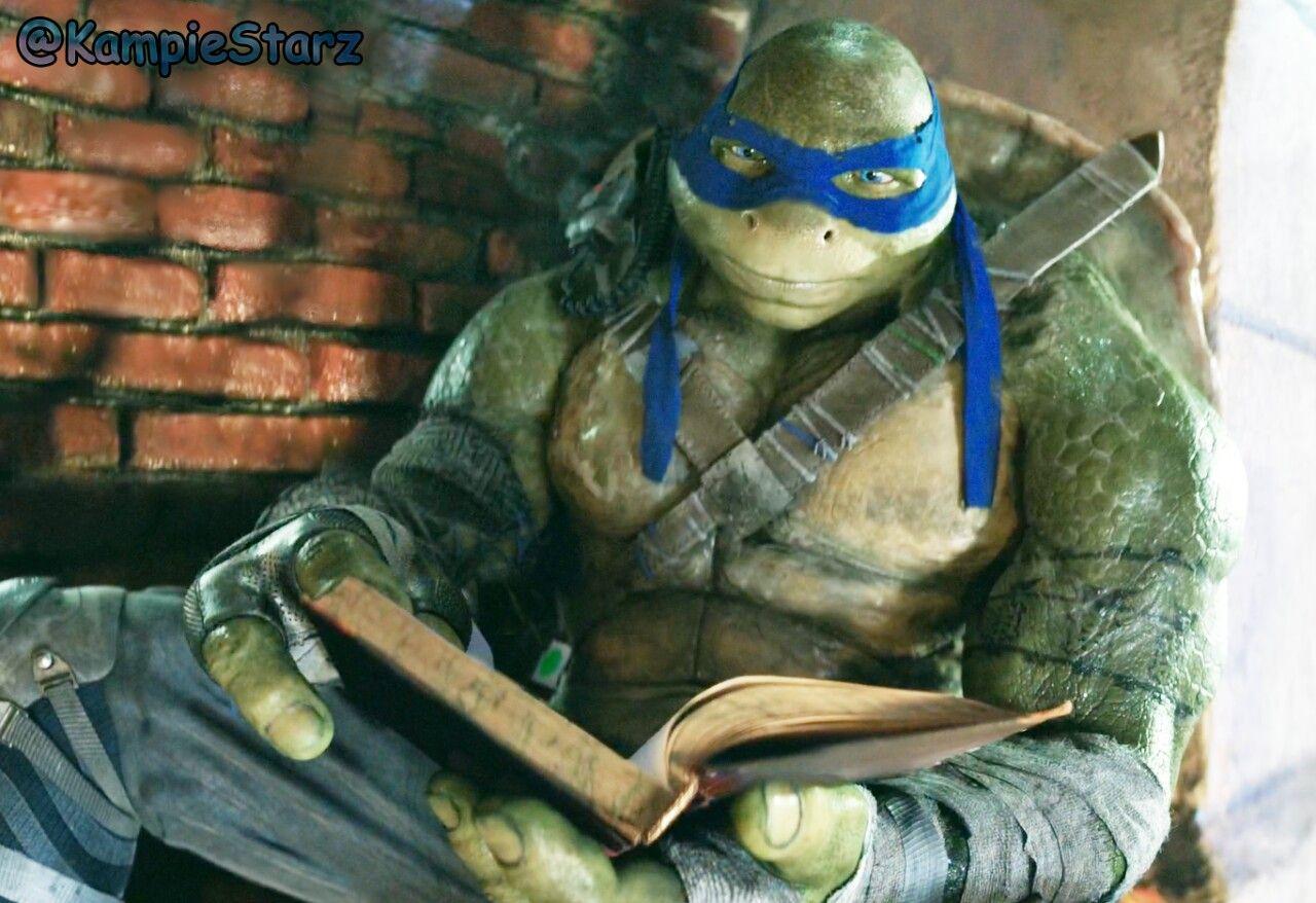 Pin On Mutant Ninja Turtles