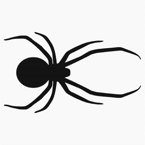 Pin Pa Familiars Spider