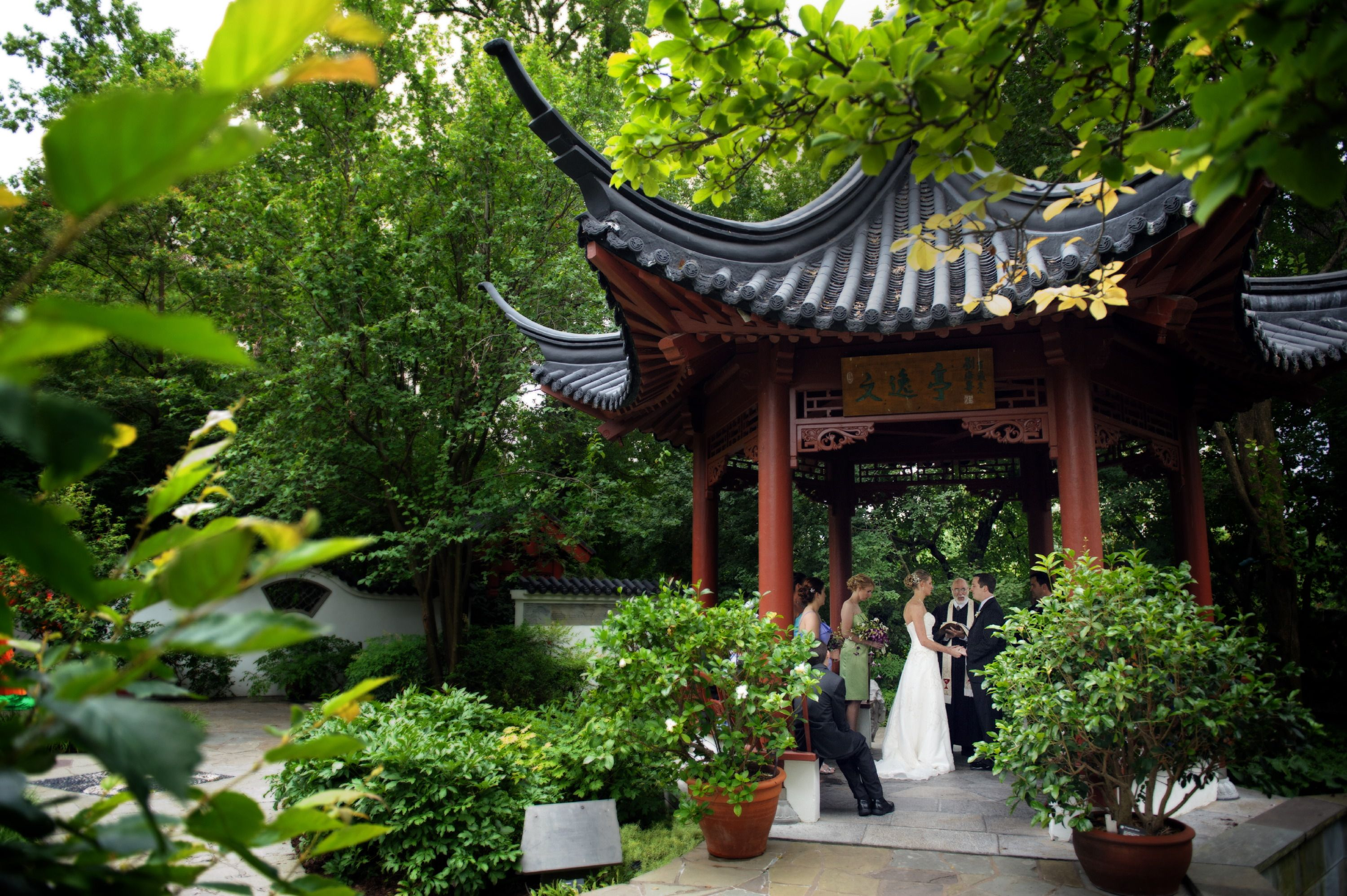Beautiful small wedding in the Chinese Garden at the Missouri