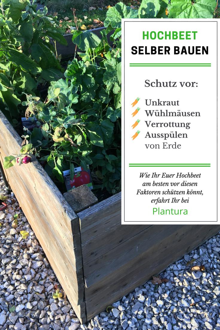 Hochbeet Bauen Anleitung Und Video Hochbeet Pflanzen Hochbeet Selber Bauen