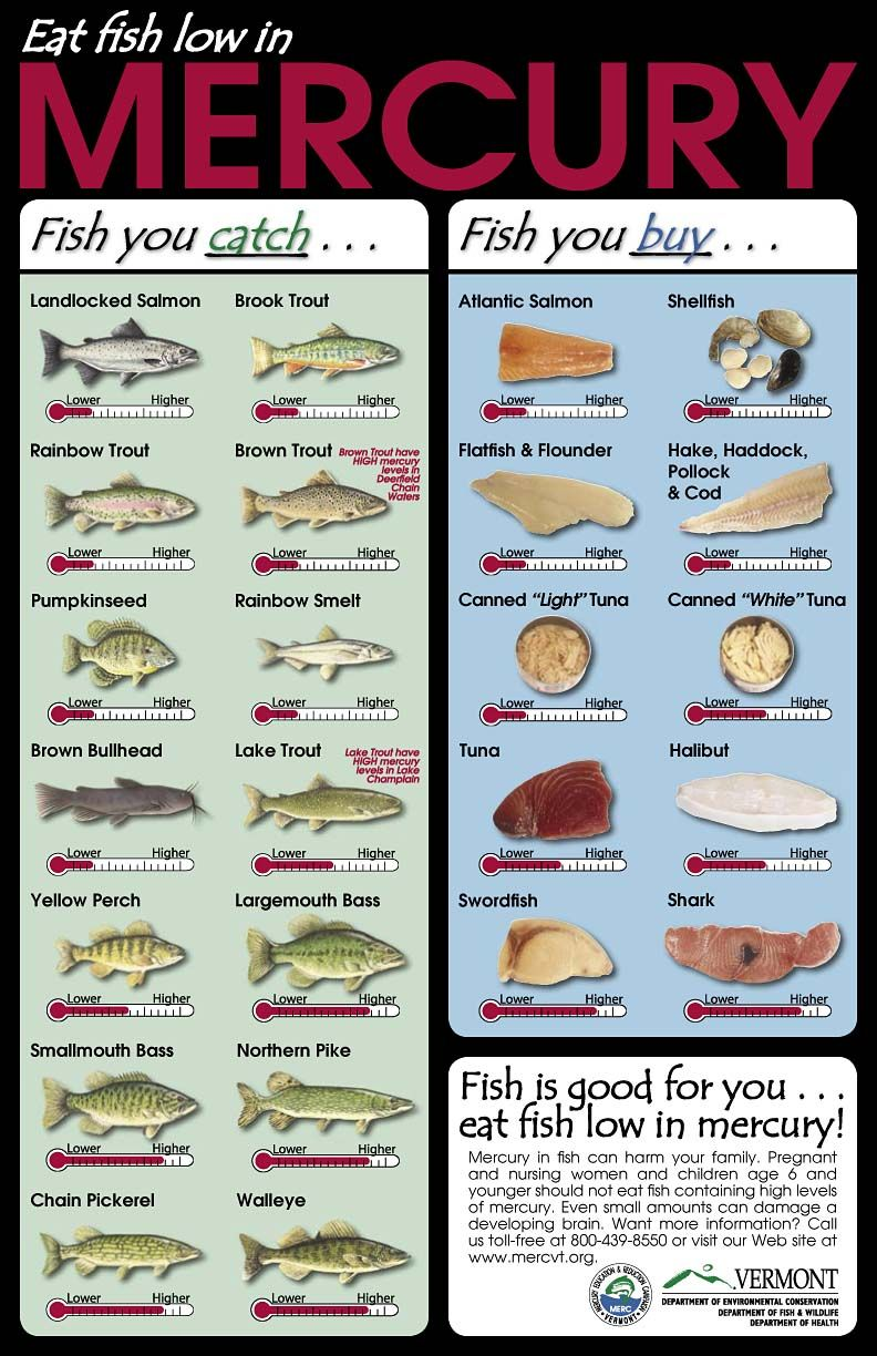 Useful Reference Chart In Regard To Fish And Their Mercury Levels Poisoning Can Be Prevented With The Right Information