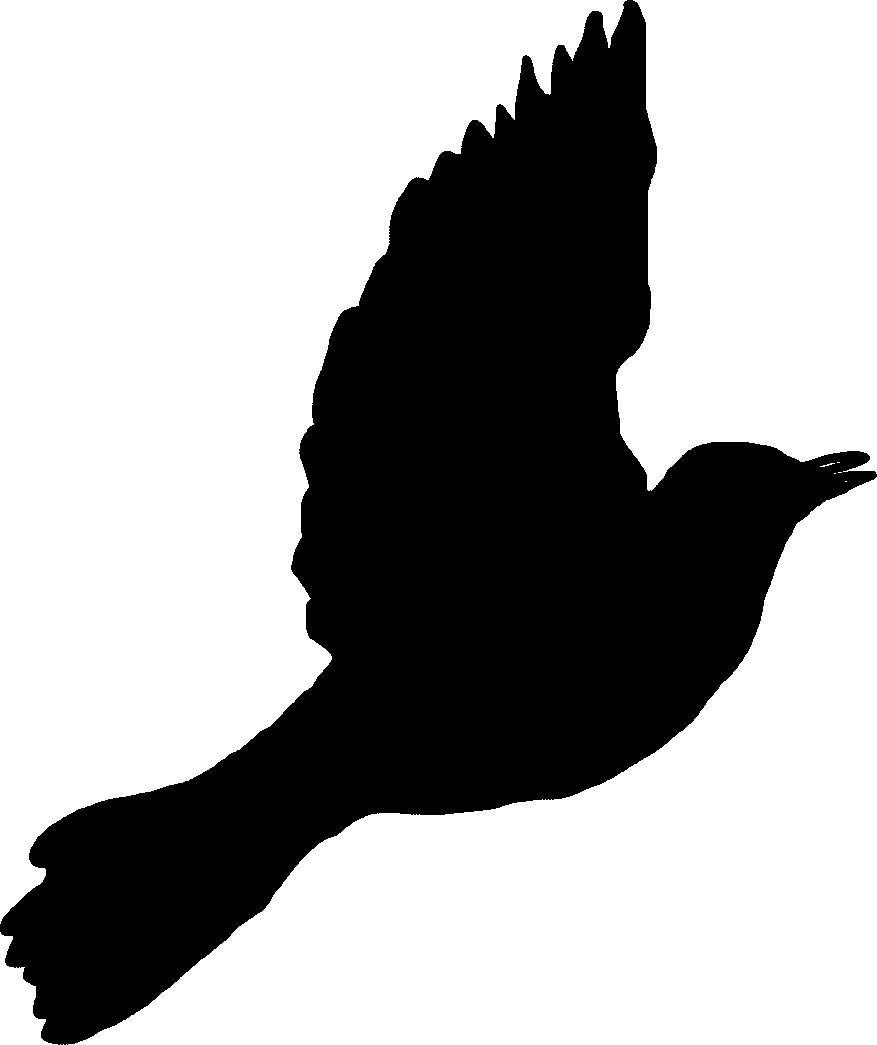 TomCharlesworth: Mocking bird silhouettes for sleeve ...