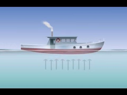 Archimedes Landau archimedes principle class 9 tutorial amrita