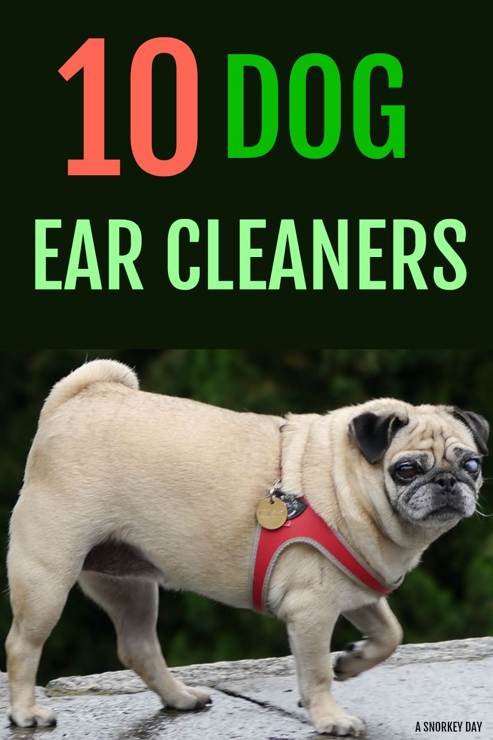 how to clean dog ears naturally