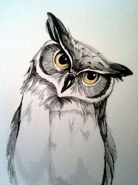 Pin By Vivian Perkins On Birds