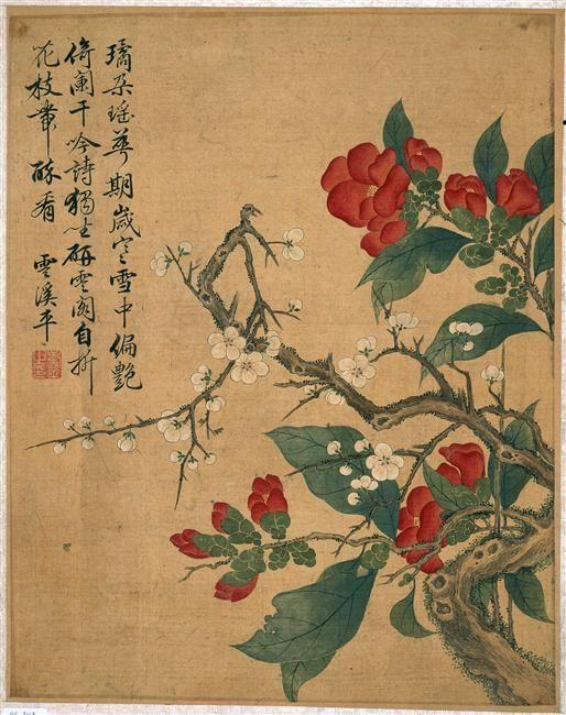 """""""Album de douze feuilles : fleurs"""" de Shouping Yun. Paris, musée Guimet - musée national des Arts asiatiques - Photo (C) Musée Guimet, Paris, Dist. RMN-Grand Palais / Ghislain Vanneste"""