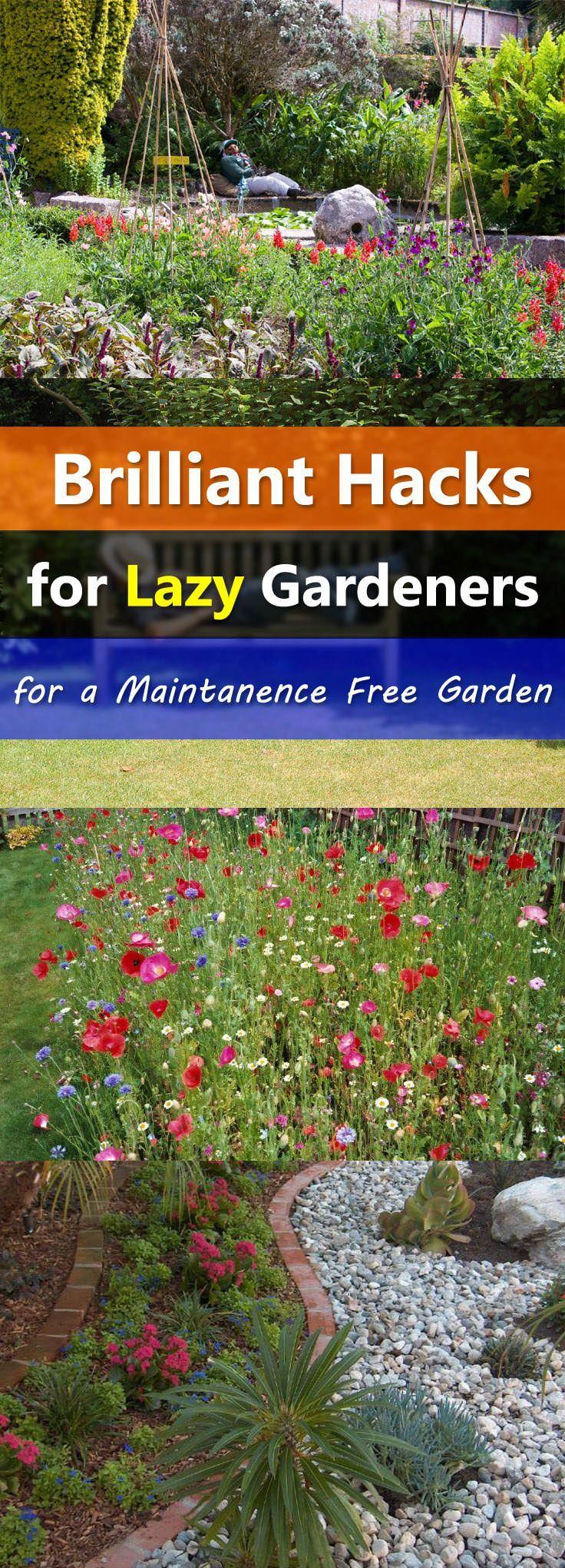 Gartenhacks für faule Gärtner, um einen pflegeleichten Garten zu schaffen #landscapingtips