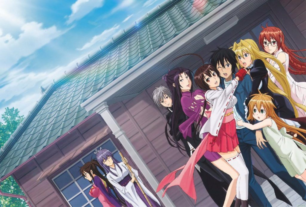 Find out what are the best harem anime to watch in 2019