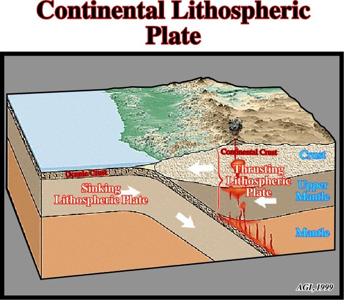 Continental Shelf Diagram When the crust of a