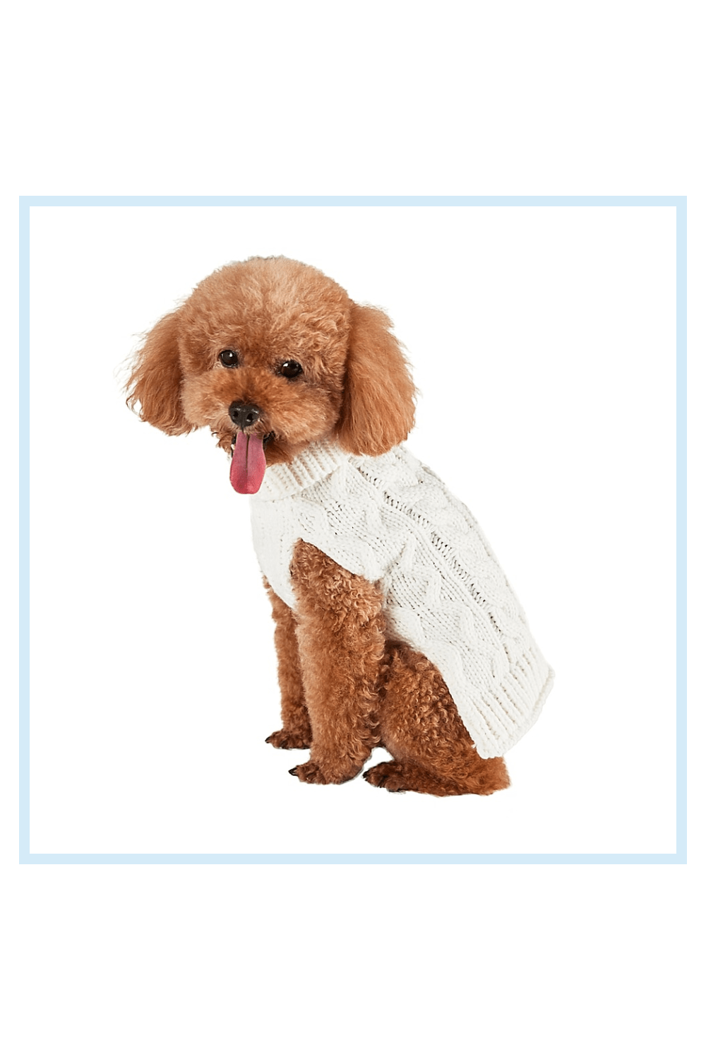 Bee & Willow Home Bee & Willow Home Medium Cable Knit Dog Sweater In White