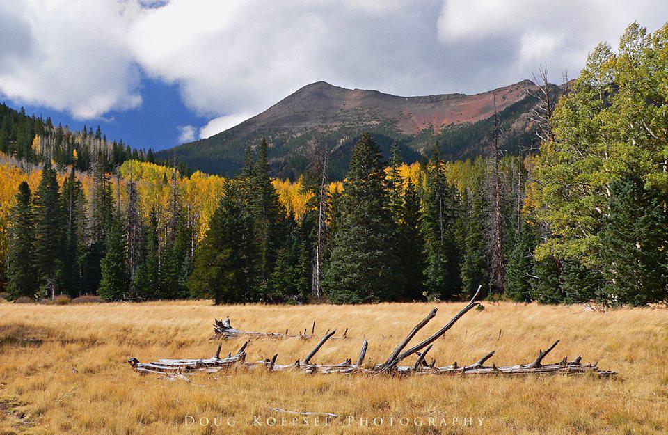 Doug Koepsel | Kachina Peaks Wilderness