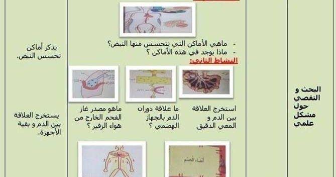 مذكرة التربية العلمية دور الدم في الجسم السنة الرابعة ابتدائي الجيل الثاني Education Memorandum Generation