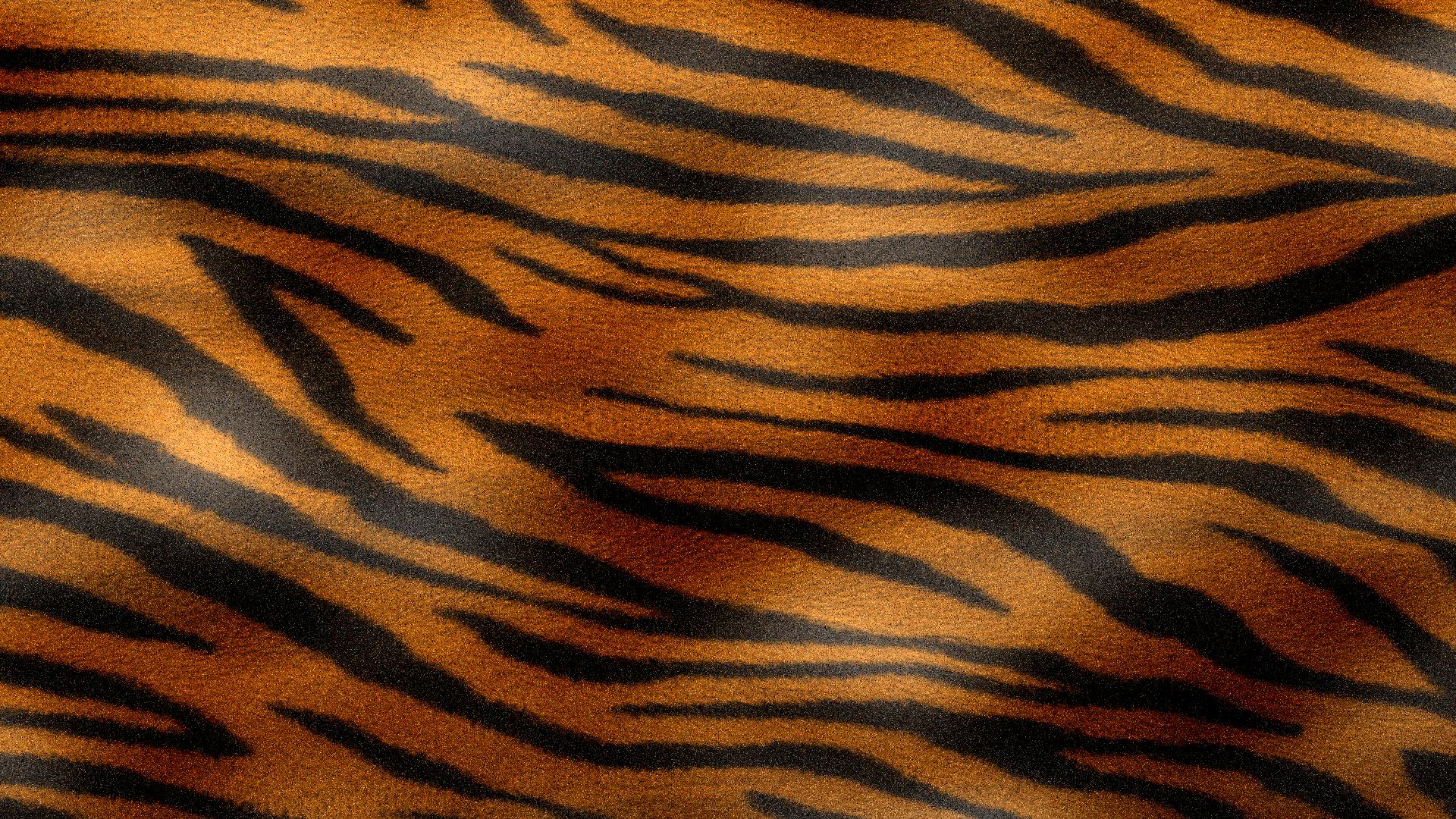 Orange Tiger Texture By Watchmebop Deviantart Com On