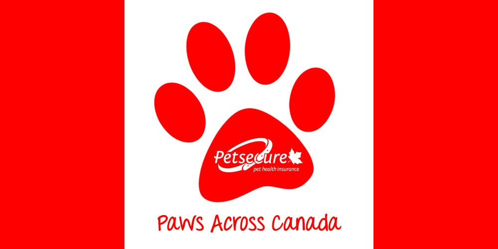 Share Your Dog And Cat Pics With Us In July And We Ll Add Them To Our Paws Across Canada Map Let S See All Tho Pet Organization Pet Health Insurance Pets