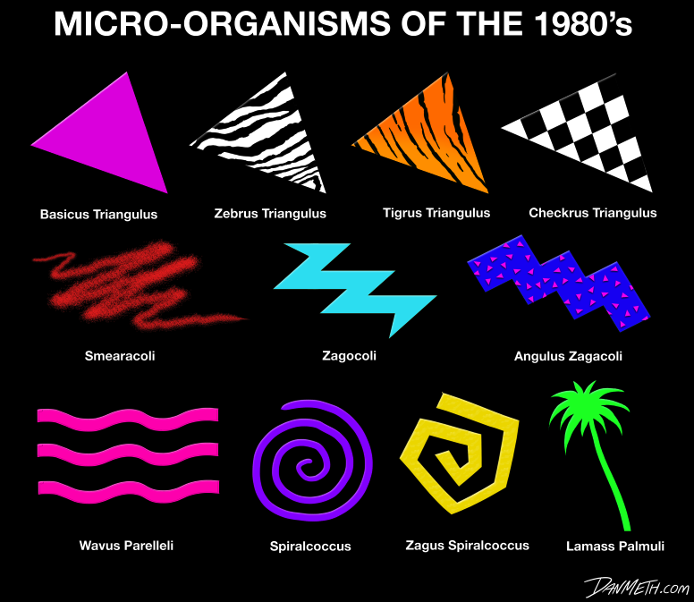 Micro Organisms Of The 1980s A Guide To The Major Unicellular