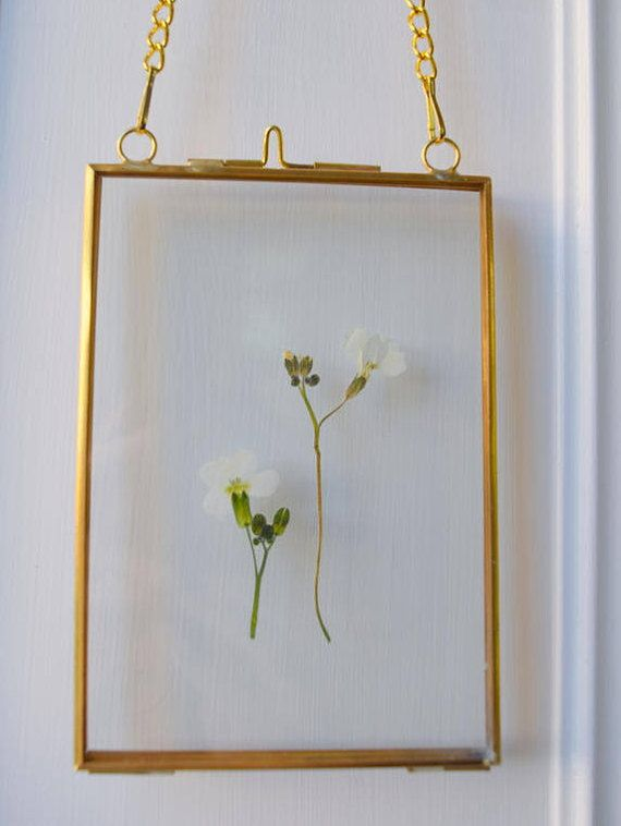 Beautiful Pressed Flower Picture In Double Sided Glass And Wild