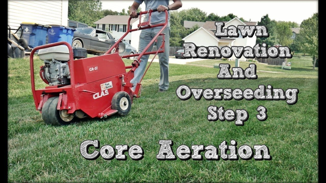 How to core aerate your lawn fall lawn renovation and overseeding