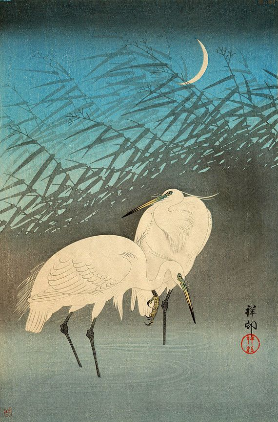 Japanese Bird Picture Woodblock Vintage Art Print Ohara Shoson