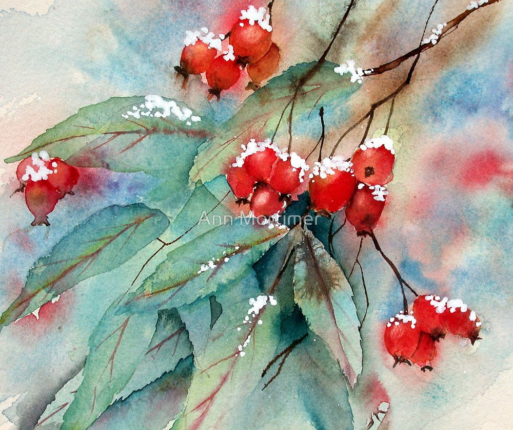 Snowy Rosehips By Ann Mortimer Christmas Watercolor Winter