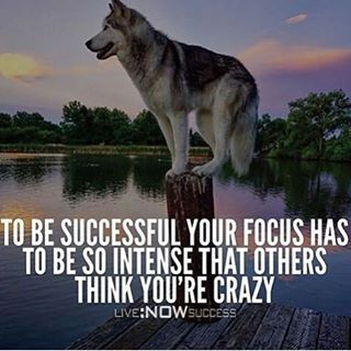 To Be Successful You Focus Has To Be So Intense That Others Think You're Crazy
