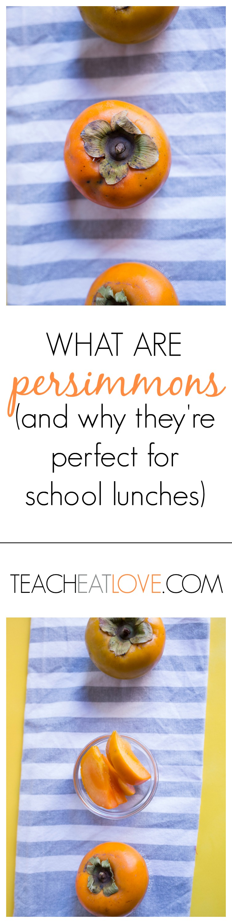 what are persimmons? www.teacheatlove.com