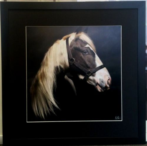 Stunning photos by horse photographer Matthew Seed stand out with a simple black mount and frame