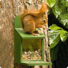 egern foderkasse