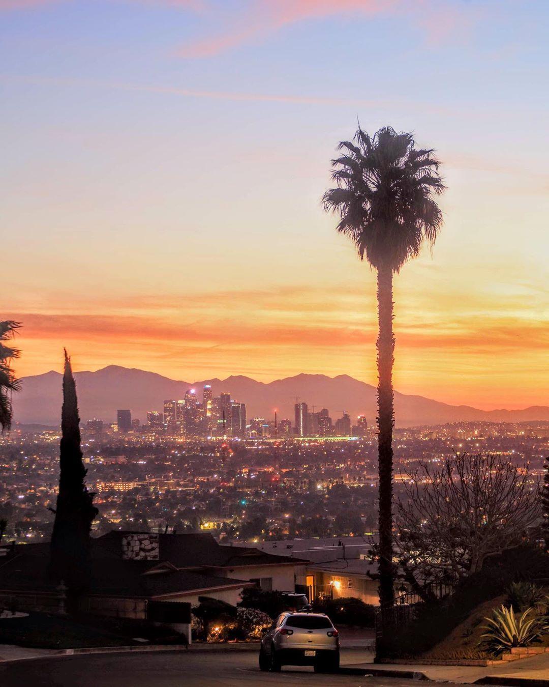 Discover Los Angeles On Instagram Venice Life600 We You La Discoverla