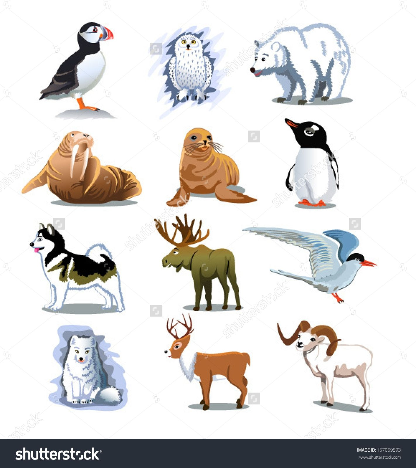 Polar Animals Clipart 1