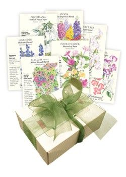 Fragrant Flower Seed Collection from Botanical Interests includes Alyssum, Four O'Clock, Lavender, Nicotiana, Stock, and Sweet Peas.