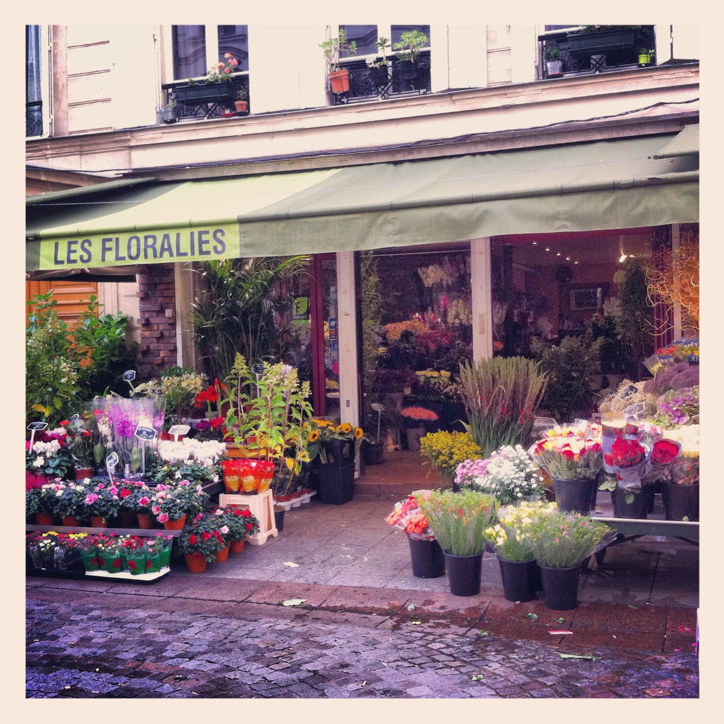 Fleuristes Paris Fleuristes Paris
