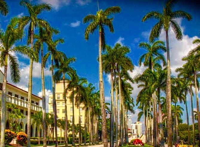 The 2016 sunset music festival southfloridafun - Weather palm beach gardens florida ...