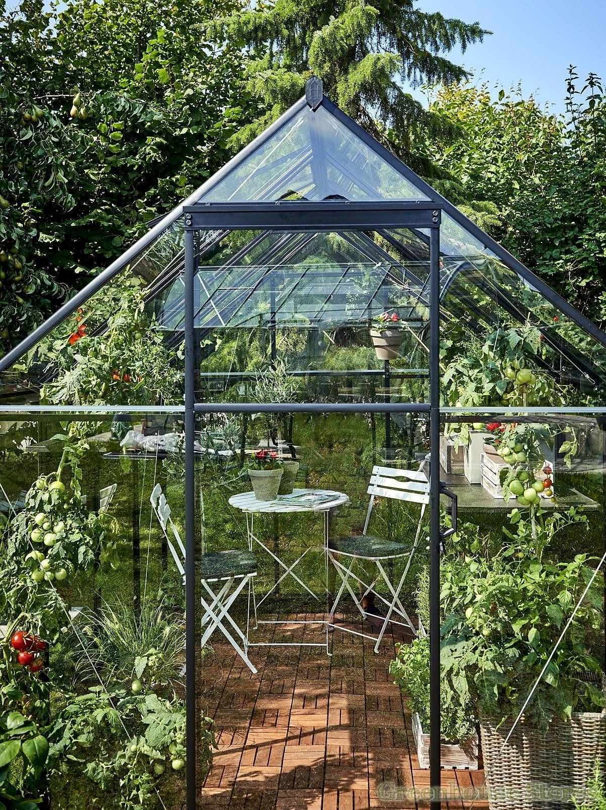 6x6 Halls Qube Greenhouse Greenhouse Stores Backyard Greenhouse Greenhouse Buy Greenhouse Backyard greenhouse for sale