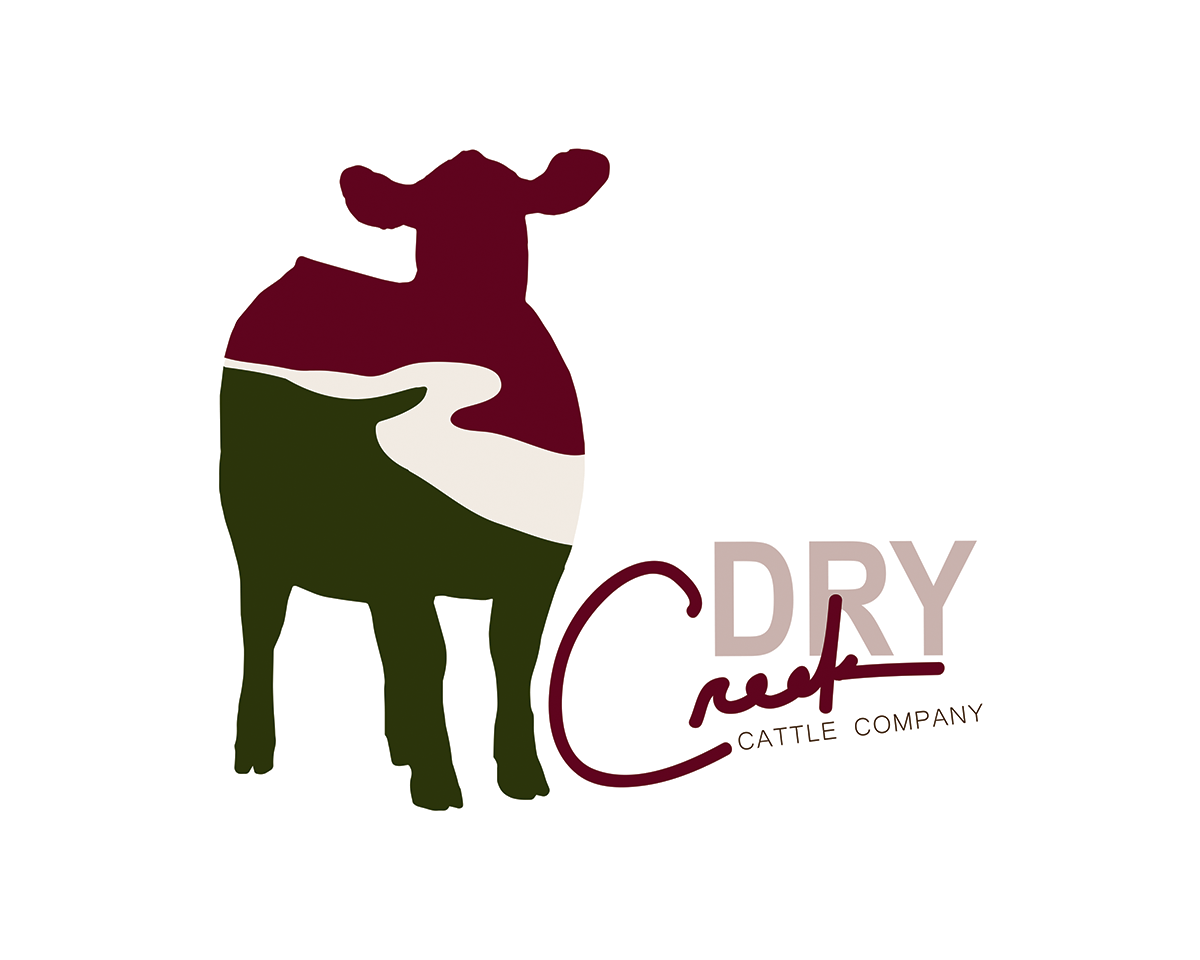 Dry Creek Cattle Company Logo Design By Morgan Leigh