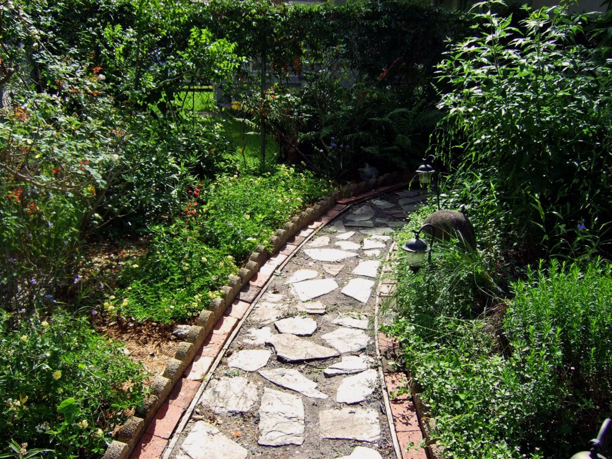 Landscape with Florida native plants and a small path ...