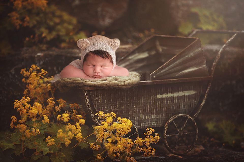 fairytale, digitalbackdrop, newborn, boy