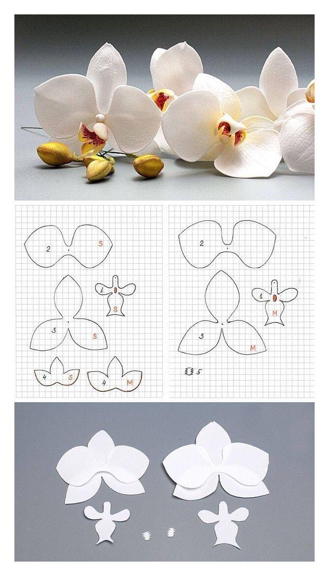 Pattern Orchid By Oton Franca Oliveira Flower Pattern Paper Flowers Diy Sugar Flowers