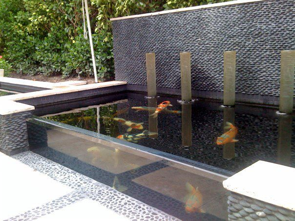 Miami pond built by vicki vaughn water columns have for Modern koi pond design