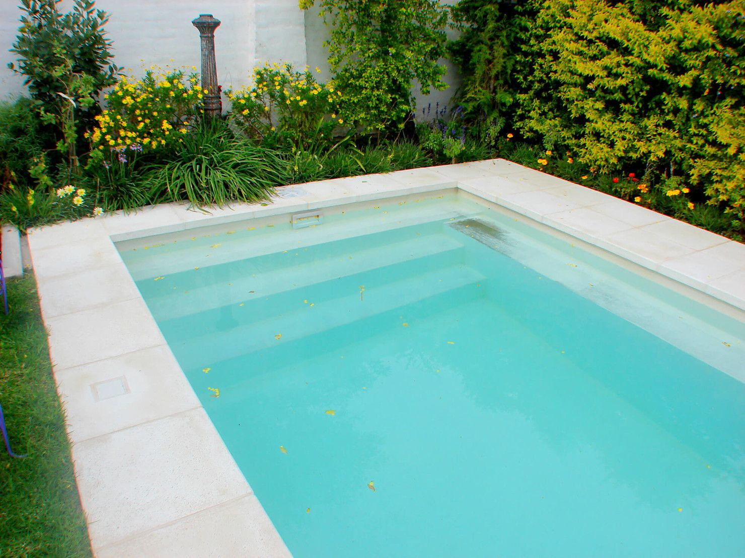 10 Pools That Are Perfect For Small Gardens Homify Small Pool Design Small Gardens Pool