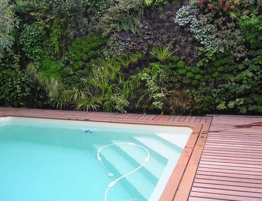 Ideal  More Awesome Vertical Garden Inspirations More Cool Vertical Garden Inspirations With Outdoor Pool And Hardwood Floor And Plant Decor