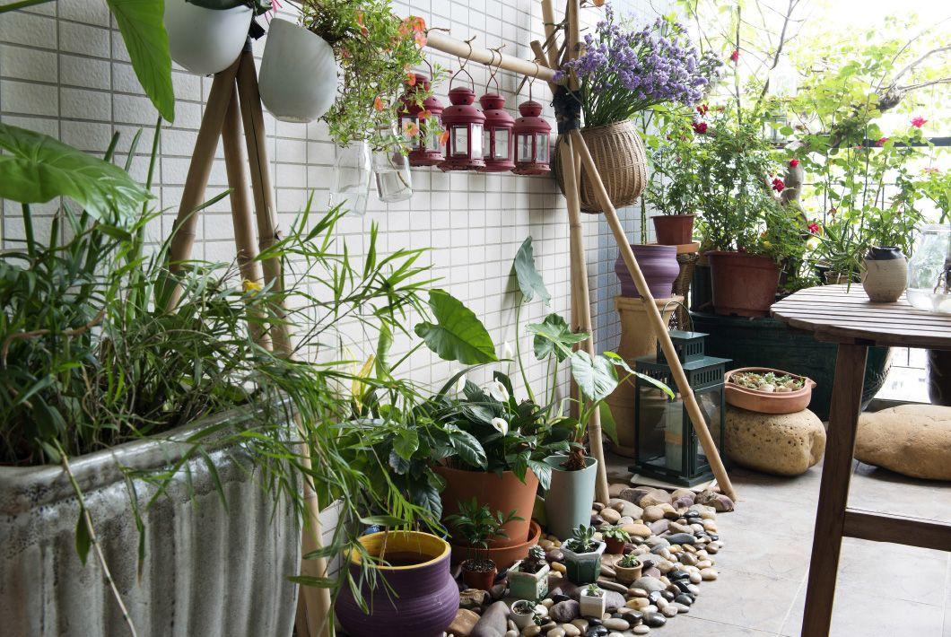 Usa plantas para fusionar tu casa y tu jardín Terrazas y patios - decoracion de terrazas con plantas