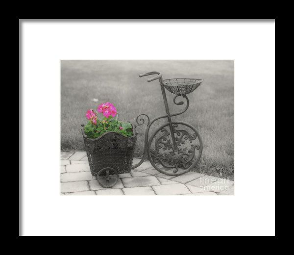 Reproduction antique tricycle flower holder done in soft black and white with a touch of color framed print available on several print formats