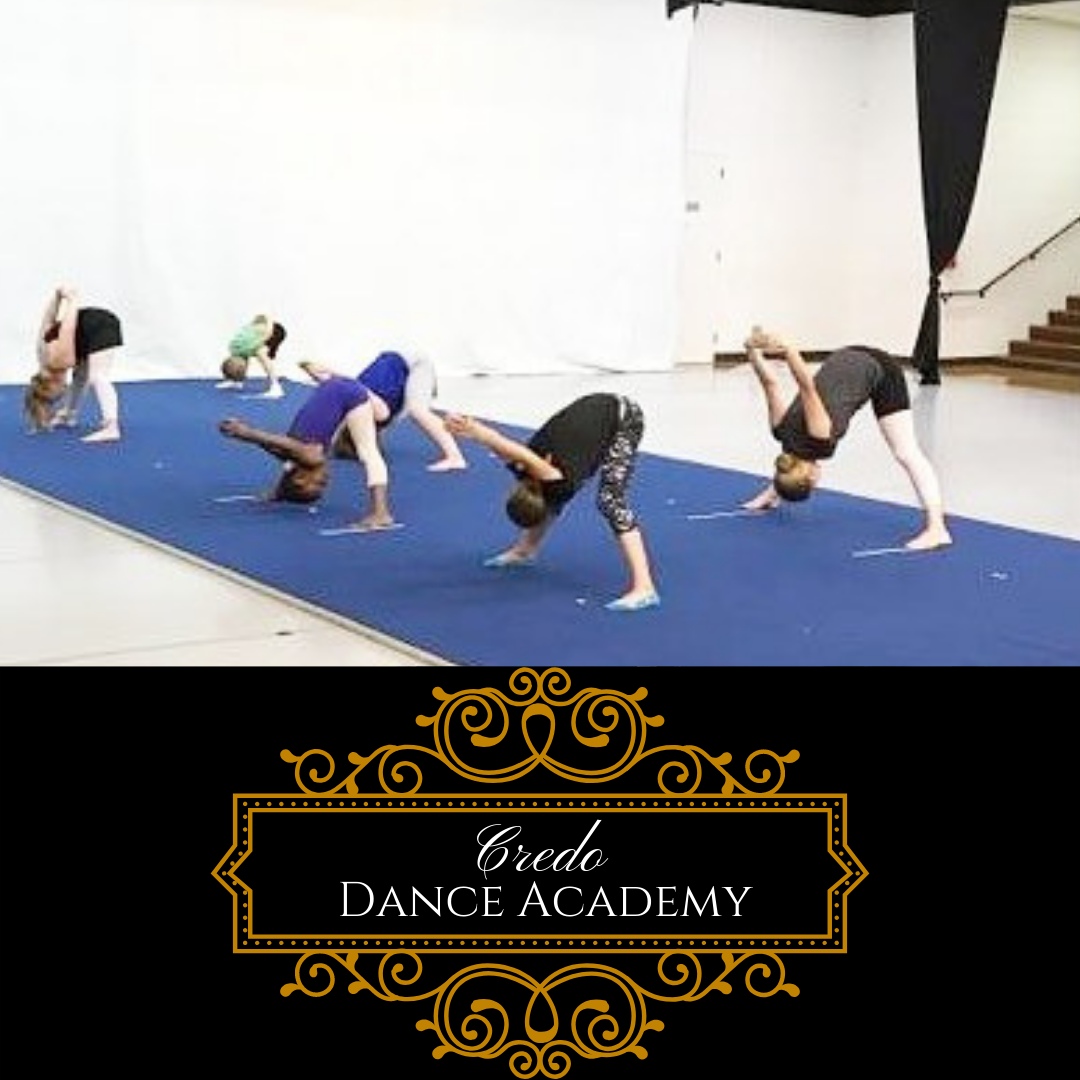 Pin By Louise Hudson On Acro Tumbling Dance Academy Dance Instruction Wrestling