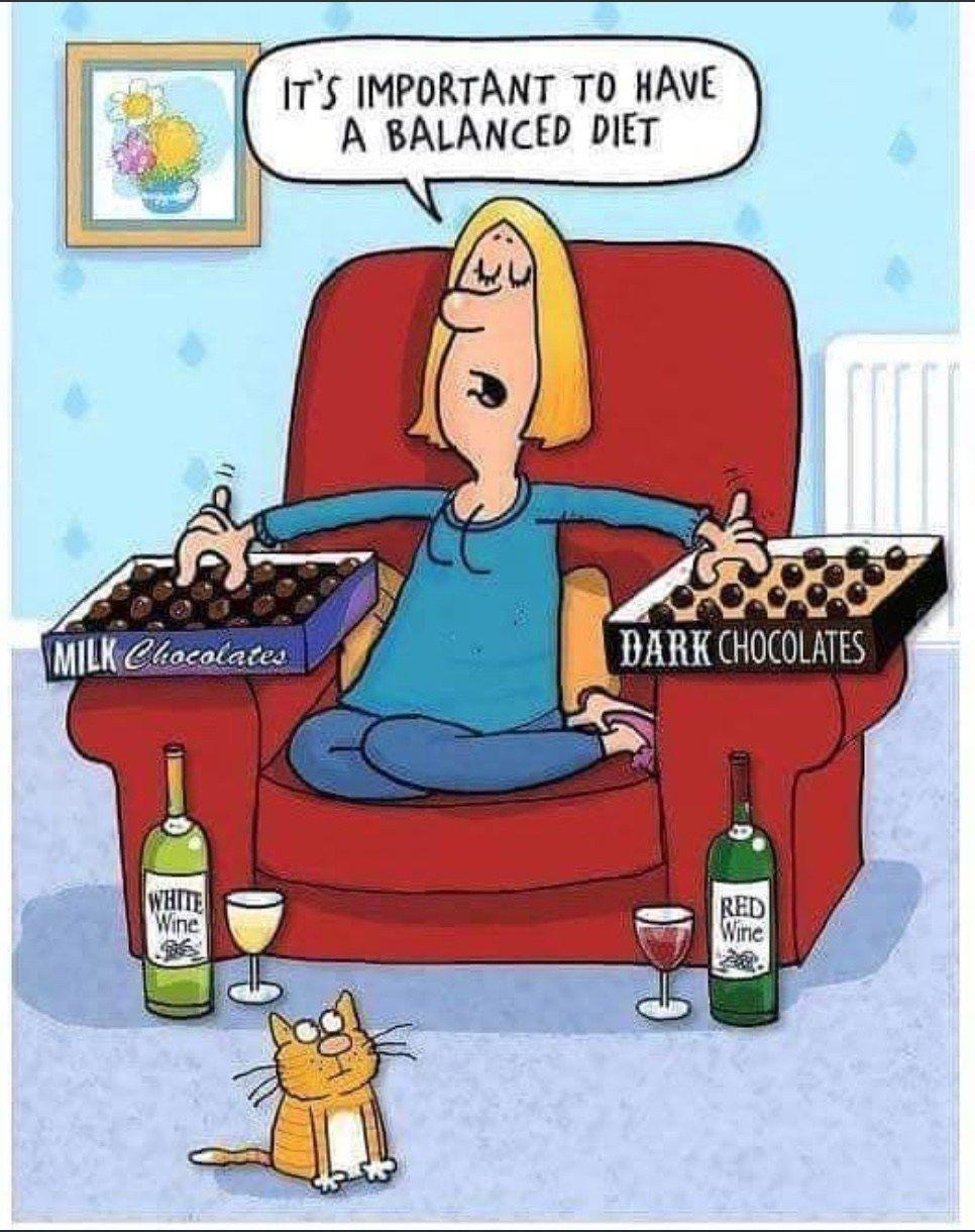 Pin By Elizabeth Barsoom On Ha Ha Made Me Laugh Diet Jokes Balanced Diet Wine Humor