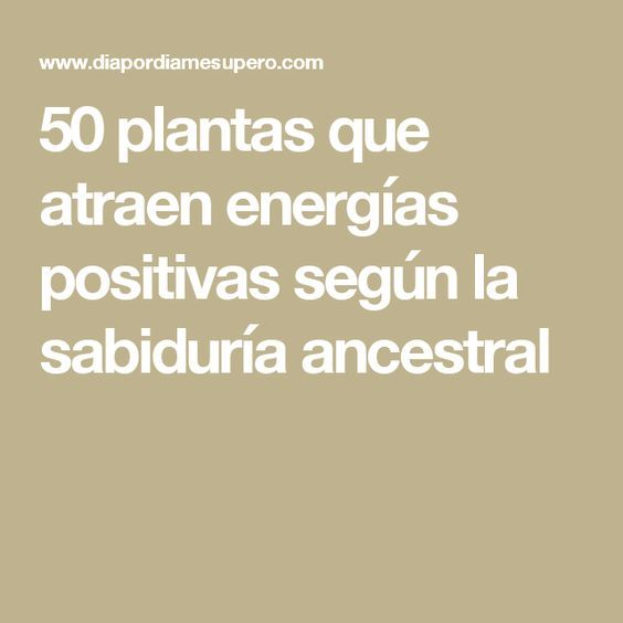 50 plantas que atraen energías positivas según la sabiduría ancestral