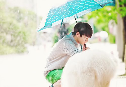 Choi Minho ♡ #Shinee - To the beautiful You
