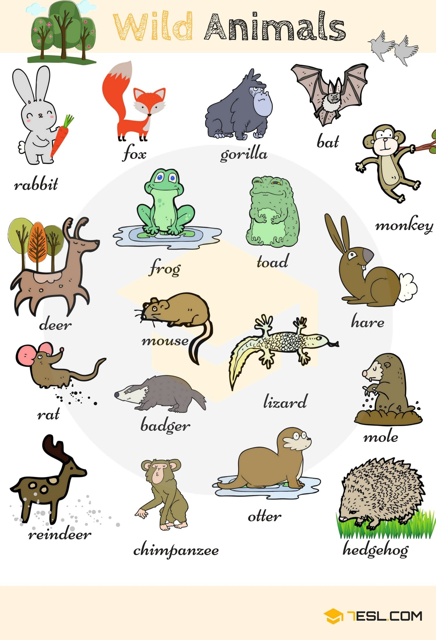 Animal Names Types Of Animals With List Pictures Animales En Ingles Animales Salvajes Fichas Ingles Infantil