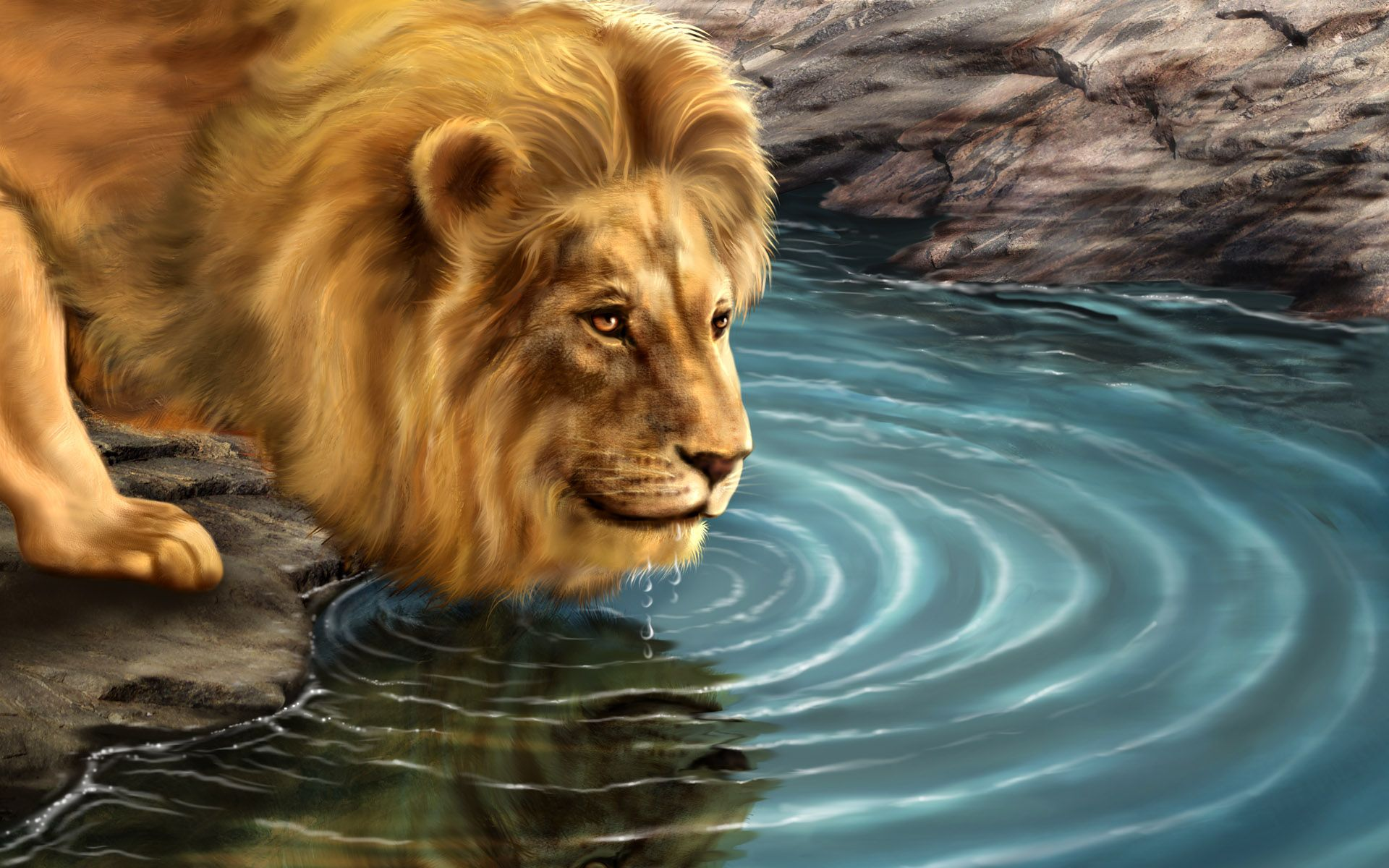 One My Fav Lions Animal Wallpaper Lion Wallpaper Lion Facts